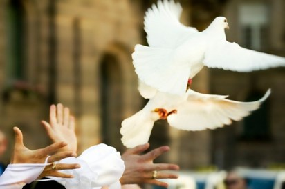 Lâcher de colombes